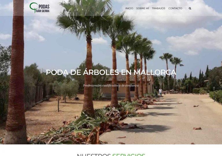 Podas de Palmeras y Pinos en Mallorca - Podas Ivan Sierra